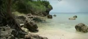 Bali adasından bir manzara